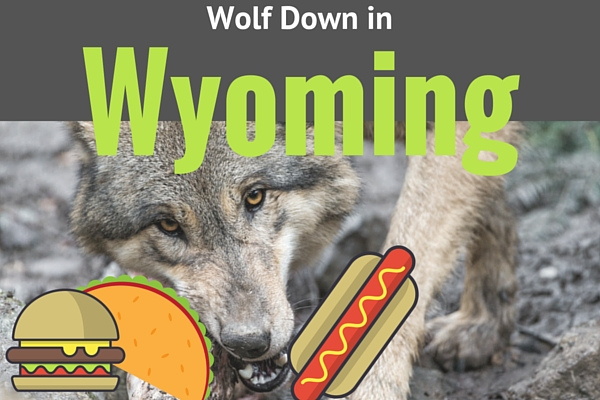 Where to Wolf Down in Wyoming